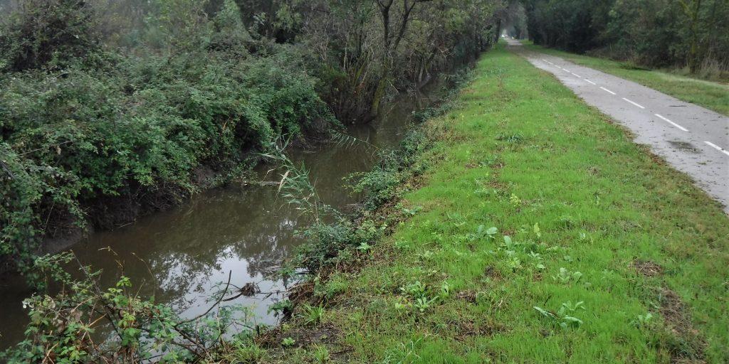 ruisseau-de-la-lauze