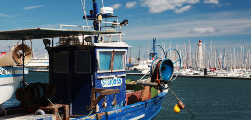 favoriser-eco-bleue-du-littoral villedeseteimg 6443